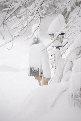 Snow Storm 2-2010