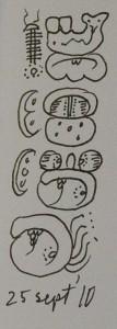 maya date glyphs